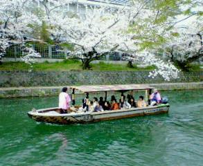 琵琶湖疏水をゆく