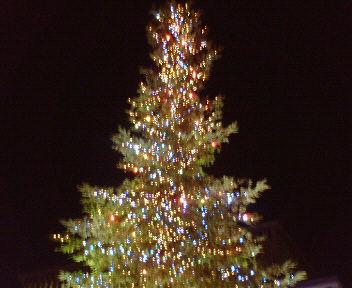 西宮 高松公園のクリスマスツリー