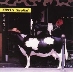 サーカス 「CIRCUS Struttin'」