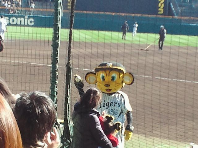 阪神タイガース対東京ヤクルトスワローズオープン戦おまけ1