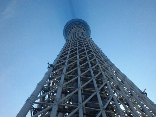 真下から見た東京スカイツリー