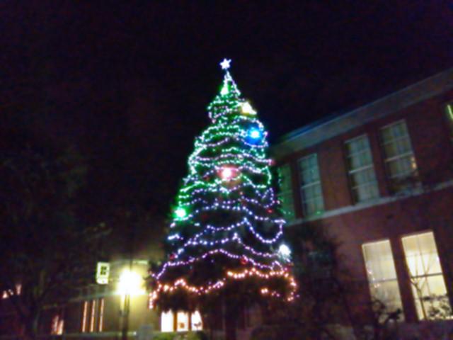 同志社女子大学のクリスマスツリー
