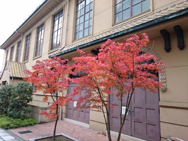 京都芸術センターの紅葉