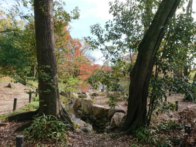 京都府立植物園にて 2018