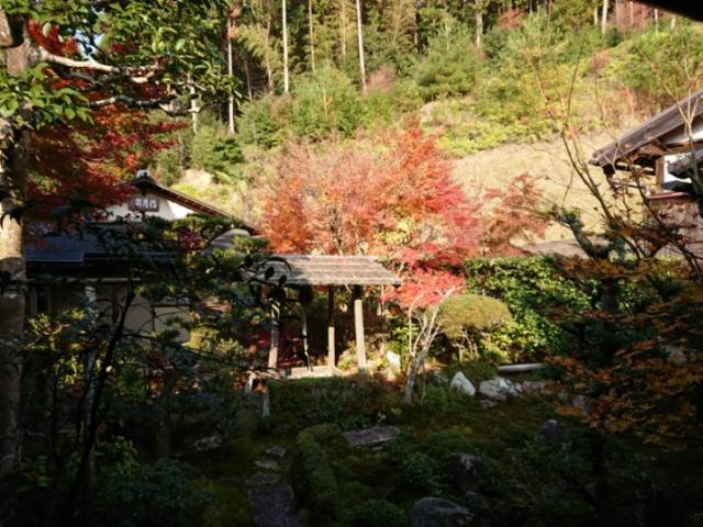 臨済宗圓光寺の紅葉2018(3)