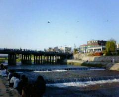 晴れた日の鴨川