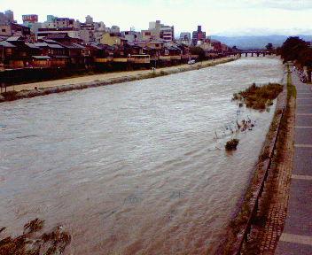 三日分の雨を集めて流れる鴨川