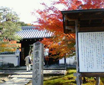 圓光寺の紅葉(1)