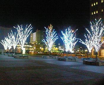 1月の西宮・高松公園