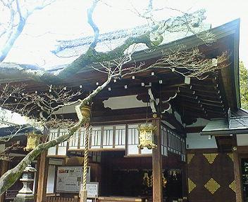 車折神社(くるまざきじんじゃ) 拝殿