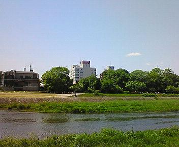 5月の鴨川