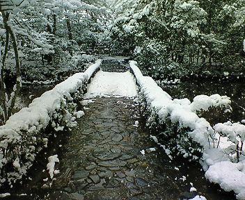 雪の法然院境内(1)