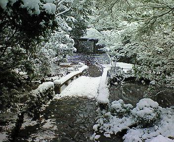 雪の法然院境内(4)