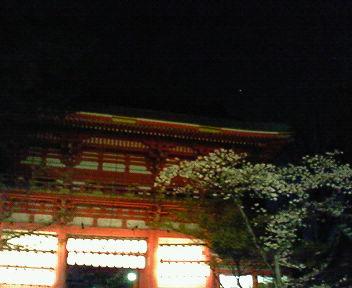 夜の八坂神社2