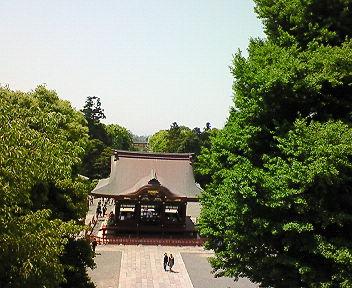 鶴岡八幡宮拝殿前からの眺め