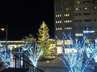 西宮・高松公園のクリスマスツリー