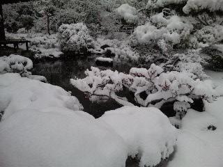 雪の銀閣寺()