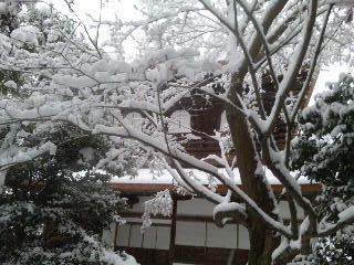 雪の銀閣寺(2010<br />  年大晦日)