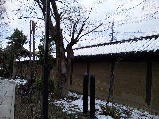 雪の三十三間堂6<br />  太閤垣その1