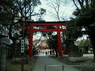 花園神社鳥居と本殿