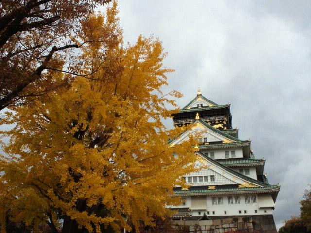 大阪城の紅葉1
