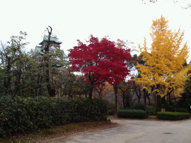 大阪城の紅葉3