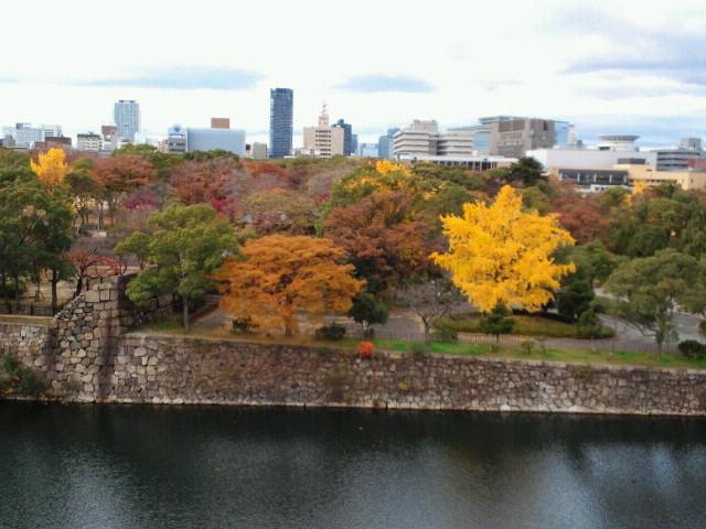 大阪城の堀と紅葉2