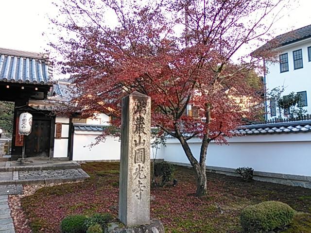 晩秋・圓光寺の紅葉1