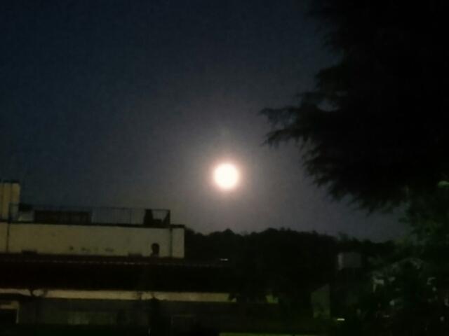 中秋の名月(俳句)