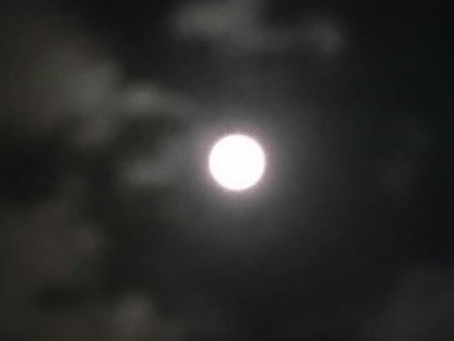 月齢16.1