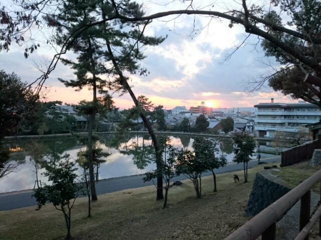 猿沢池の夕暮れ