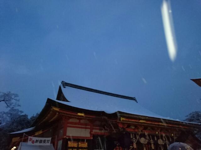 雪の八坂神社 降りかかる雪 2017年1月15日