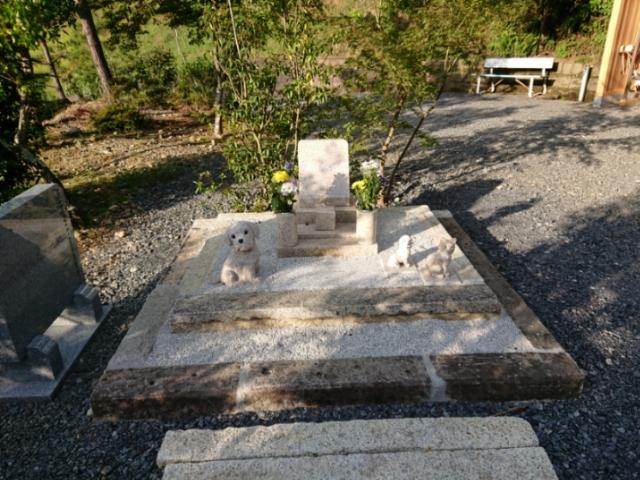 臨済宗圓光寺 ペットの墓