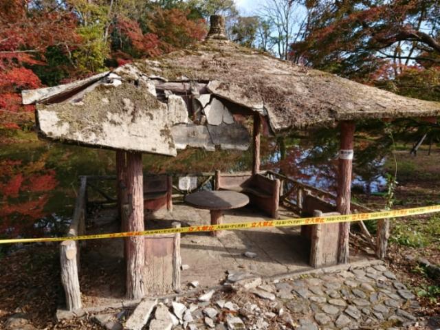 京都府立植物園 台風21号の爪痕
