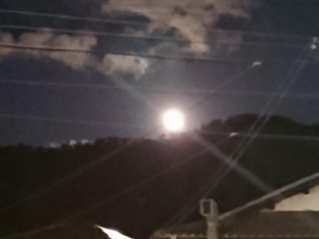 千年目の望月現る