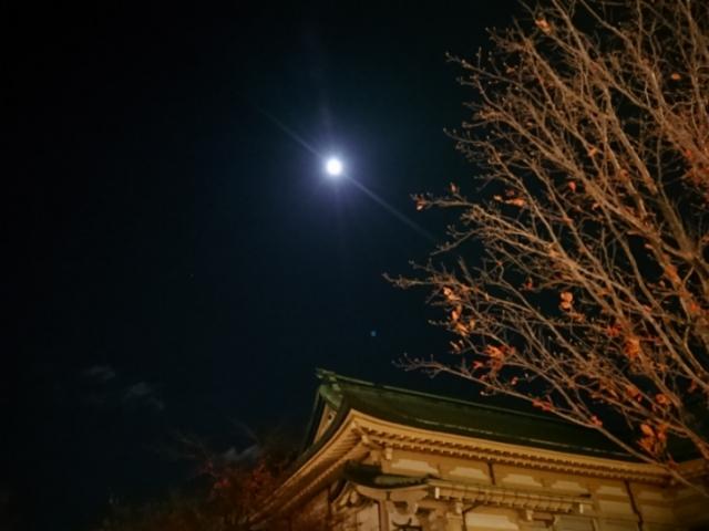 千年目の望月と京都市美術館別館