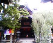 2004062914chohoji.jpg