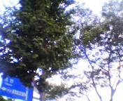 200408191745.jpg