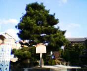 20040819ichisagari.jpg