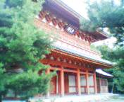 20040829rikyu.jpg