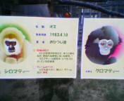 20040912sirokuro.jpg