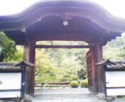 20041009akechimon.jpg