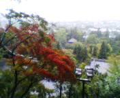 20041009koyo.jpg