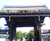 20041107gisyu.jpg