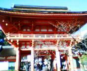 20050102kamigamo.jpg