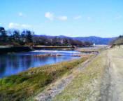 20050102kamogawa.jpg