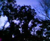 200501101tadasu.jpg
